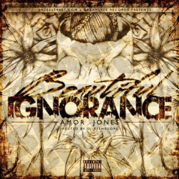 Beautiful Ignorance Cover